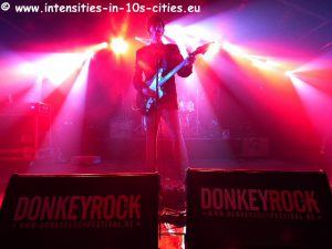 Customs_Donkey_2012_0018.JPG